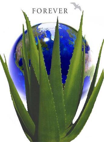 Aloe_emblem1